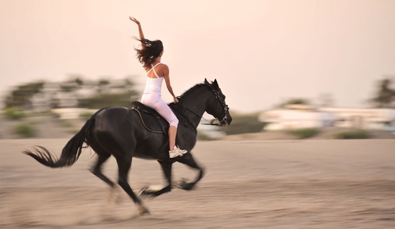 Best three facts you should know about Horseback riding
